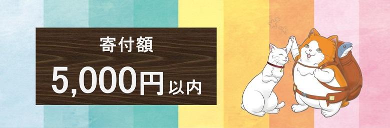 5,000円以内の人気返礼品特集