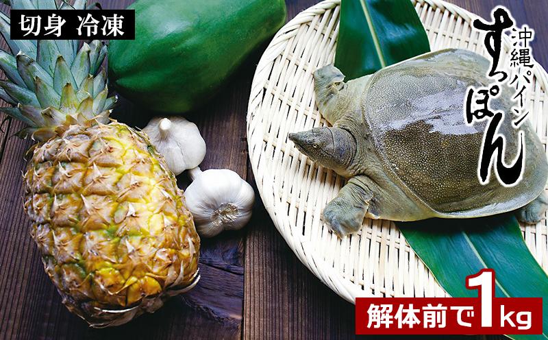 「沖縄パインすっぽん」切身(冷凍)