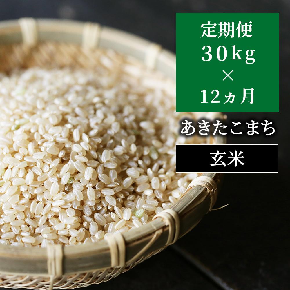 W44定期便 あわくら源流米 あきたこまち玄米30kg×12回