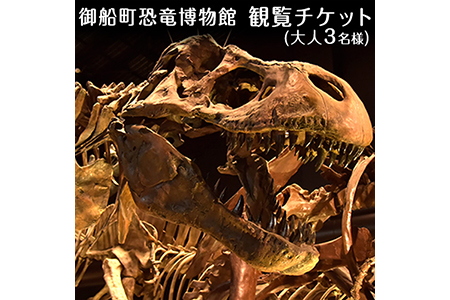 熊本県御船町 御船町恐竜博物館観覧チケット(大人3名様) 御船町恐竜博物館《1月中旬-2月末頃より順次出荷》