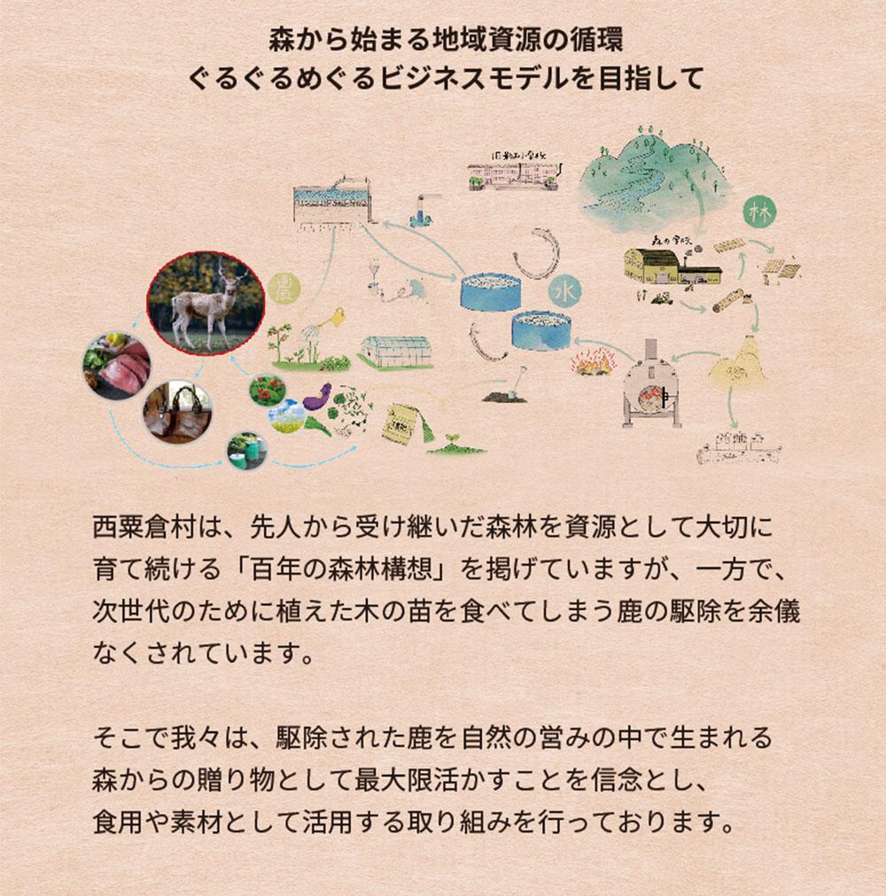 shikasuraisu004アートボード 4.jpg