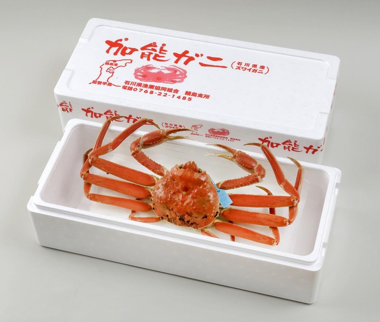 【配達日時指定できます】加能ガニ(雄ズワイガニ、冷凍)(大)【R4.1月6日以降にお届け】