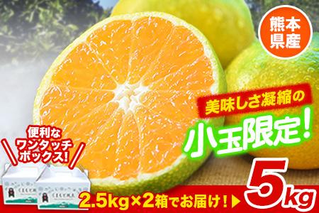 ご家庭用 訳あり くまもと小玉みかん 約5kg(2.5kg×2箱) 熊本県産 S-3Sサイズ 熊本県産 期間限定 フルーツ 秋 旬 柑橘 小玉 みかん 長洲町《3-7営業日以内に出荷(土日祝除く)》