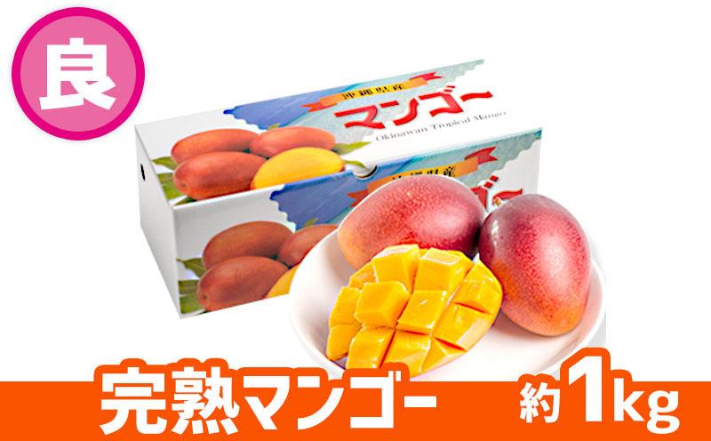 【2022年発送】ヤマト農園 完熟マンゴー約1kg(良品)