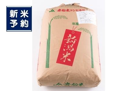 【新米受付】ND4013 岩船米コシヒカリ(玄米)