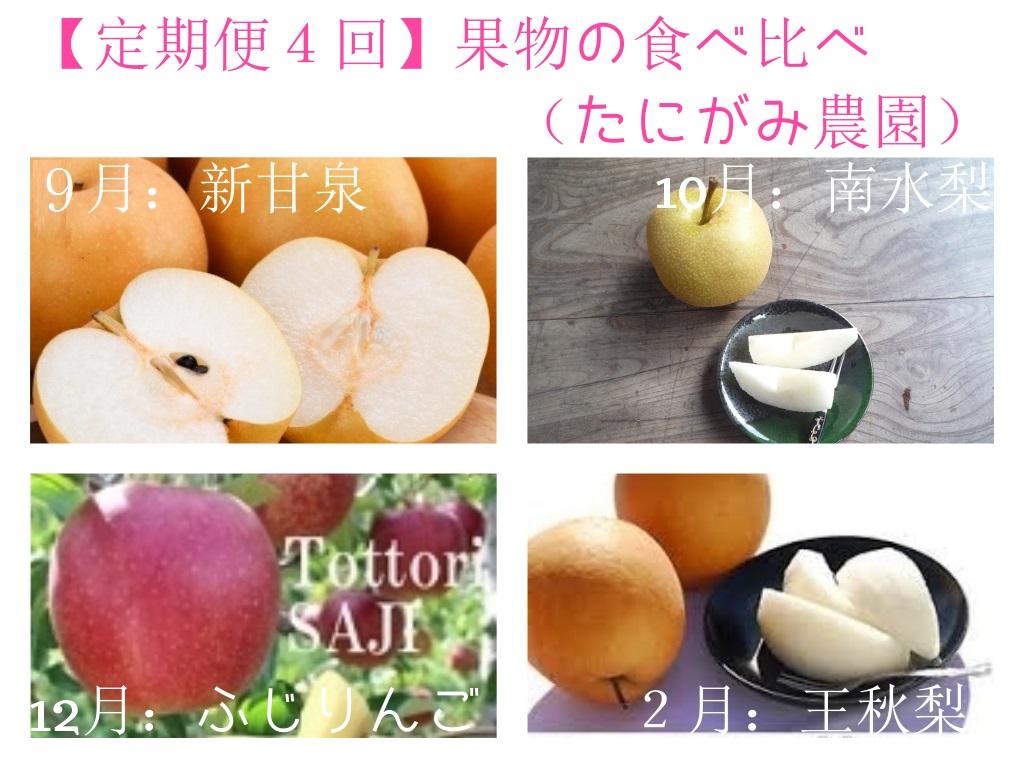 497 【定期便4回】果物の食べ比べ(たにがみ農園)