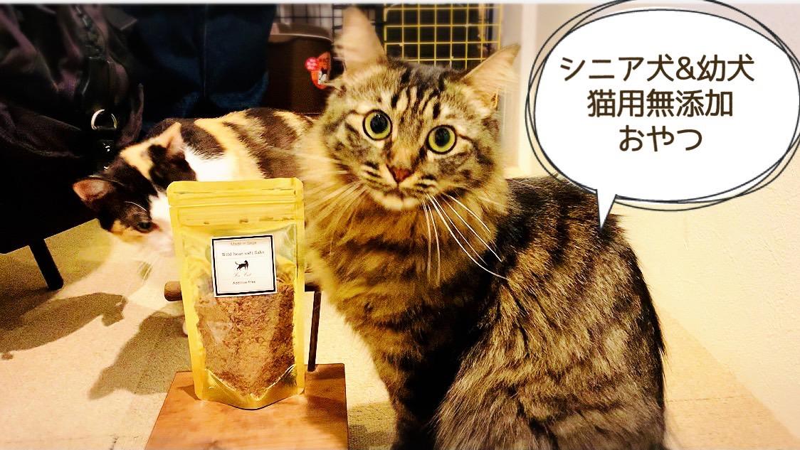 FB040_シニア犬&幼犬&猫用の無添加おやつ☆ふわふわ天然いのししフレーク4個