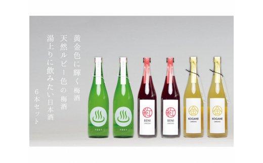 No.190 梅酒「KOGANE/BENI」日本酒「温泉マーク1661」720ml 6本セット / お酒 うめ酒 芳醇 磯部温泉 群馬県
