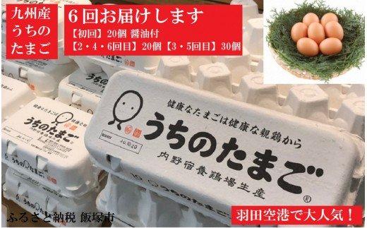 【D5-005】うちのたまご醤油セット(6回お届け)