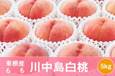 もも「川中島白桃」5kg JA提供(2021年8月中旬~9月上旬送付) P-1523