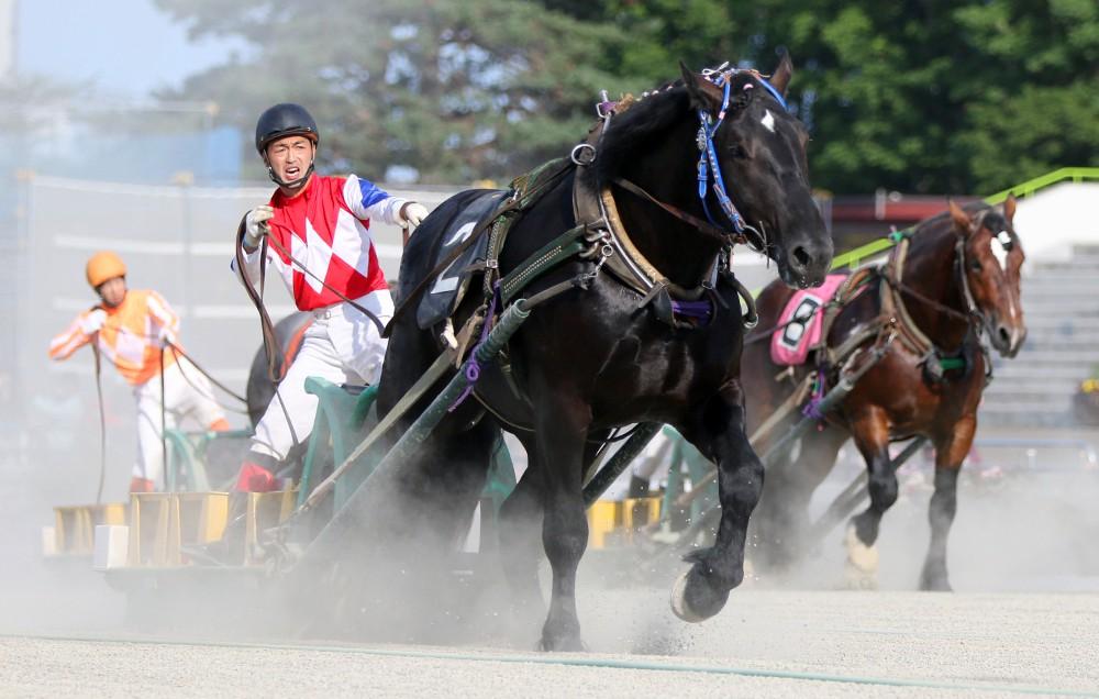 世界にたったひとつ!ばんえい競馬冠レース