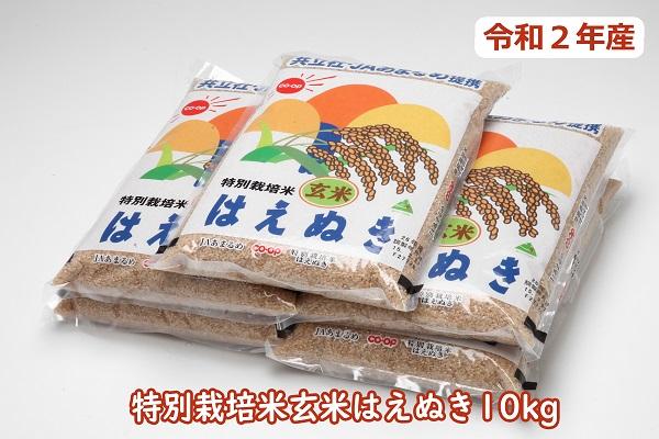 令和2年産特別栽培米玄米はえぬき10kg(10月以降順次発送)