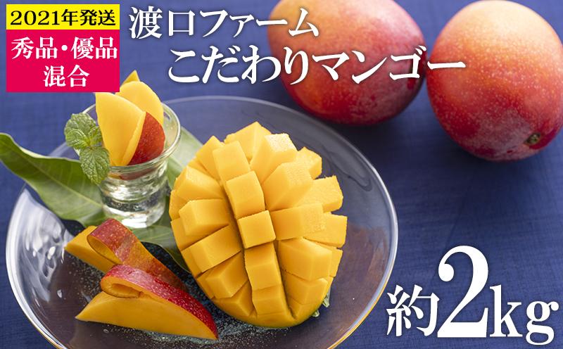 【2021年発送】渡口ファームのこだわりマンゴー約2kg〈秀品・優品混合〉