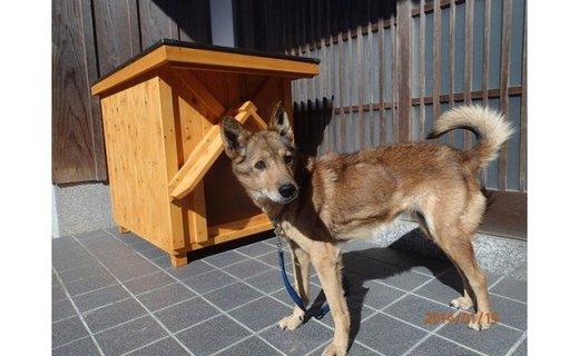 KS002高知県産杉の犬小屋・中型犬コース