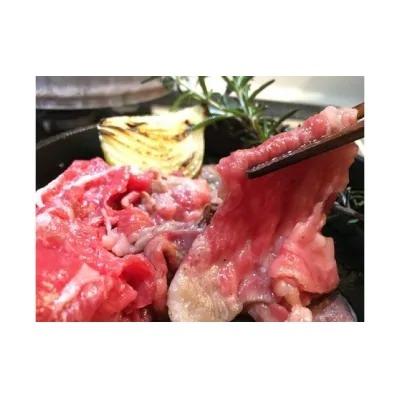 【毎月交互にお届け】お米で育てたむなかた牛「切落し」と「ハンバーグ」の12ヶ月定期便_ PB0043