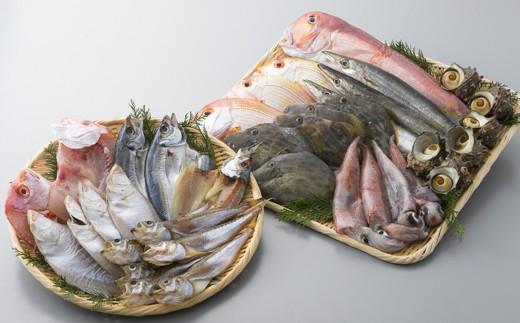 035M4 旬の鮮魚介類・干物詰合せ[髙島屋選定品]