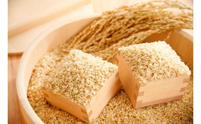 【2年産】すっごいもちもち 「しきゆたか」 玄米【30㎏×1袋】【C008SM1】