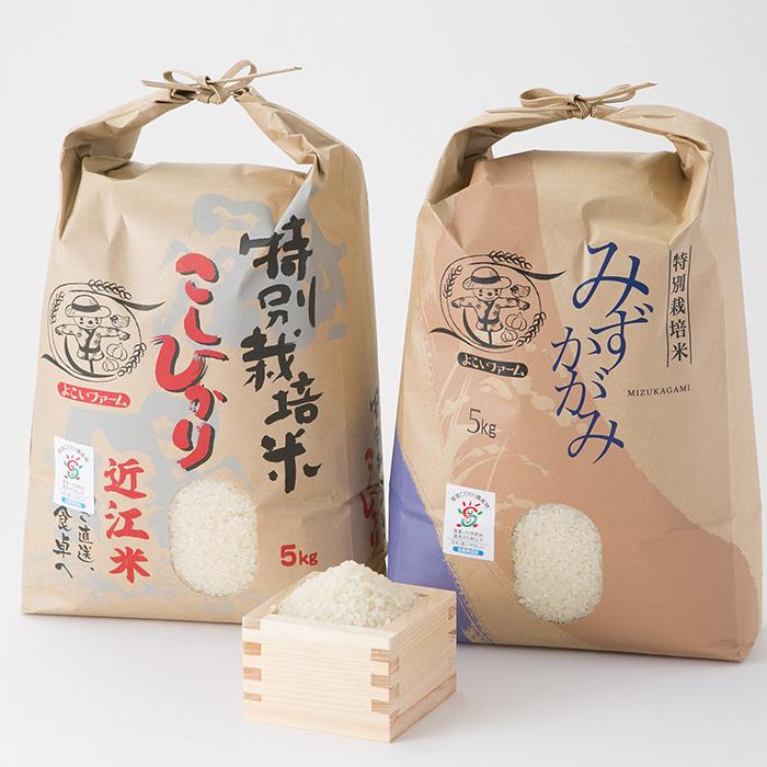 【C-539】よこいファーム 特別栽培米食べ比べセットA [高島屋選定品]