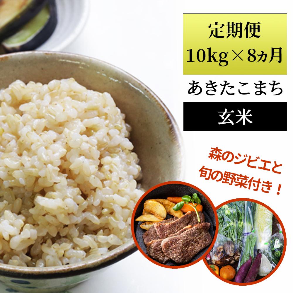 Wp2<ふるプレ限定>定期便 あわくら源流米 あきたこまち玄米10kg×8回