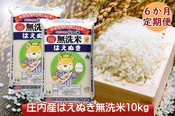 <6月開始>庄内米6か月定期便!はえぬき無洗米10kg(入金期限:2021.5.25)