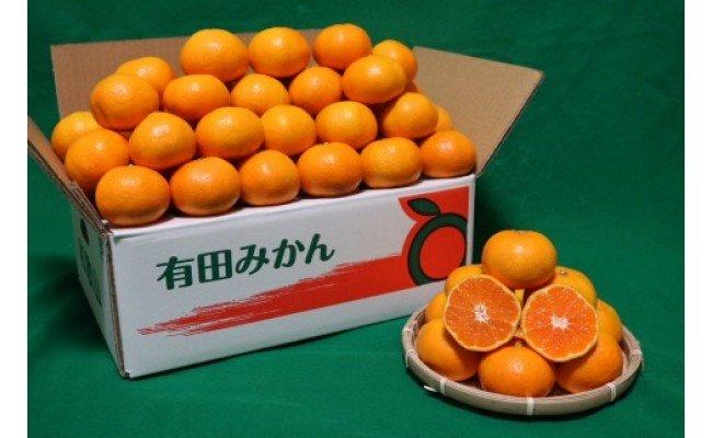 ZE6176_和歌山県産 有田みかん 10kg サイズ混合【まごころ手選別】