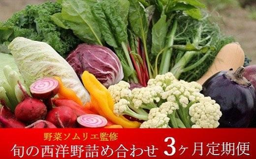 K1744【3ヶ月定期便】野菜ソムリエ監修 旬の⻄洋野菜詰め合わせ