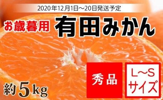 ZA6195_(お歳暮用)有田みかん 約5kg  S~Lサイズ 【12月1日~20日発送予定】