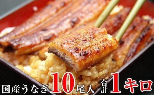 491.国産うなぎ長焼きセット(合計1kg)
