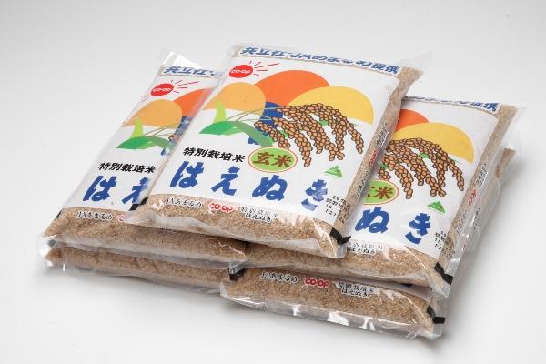 令和元年産 特別栽培米 玄米 はえぬき 10kg