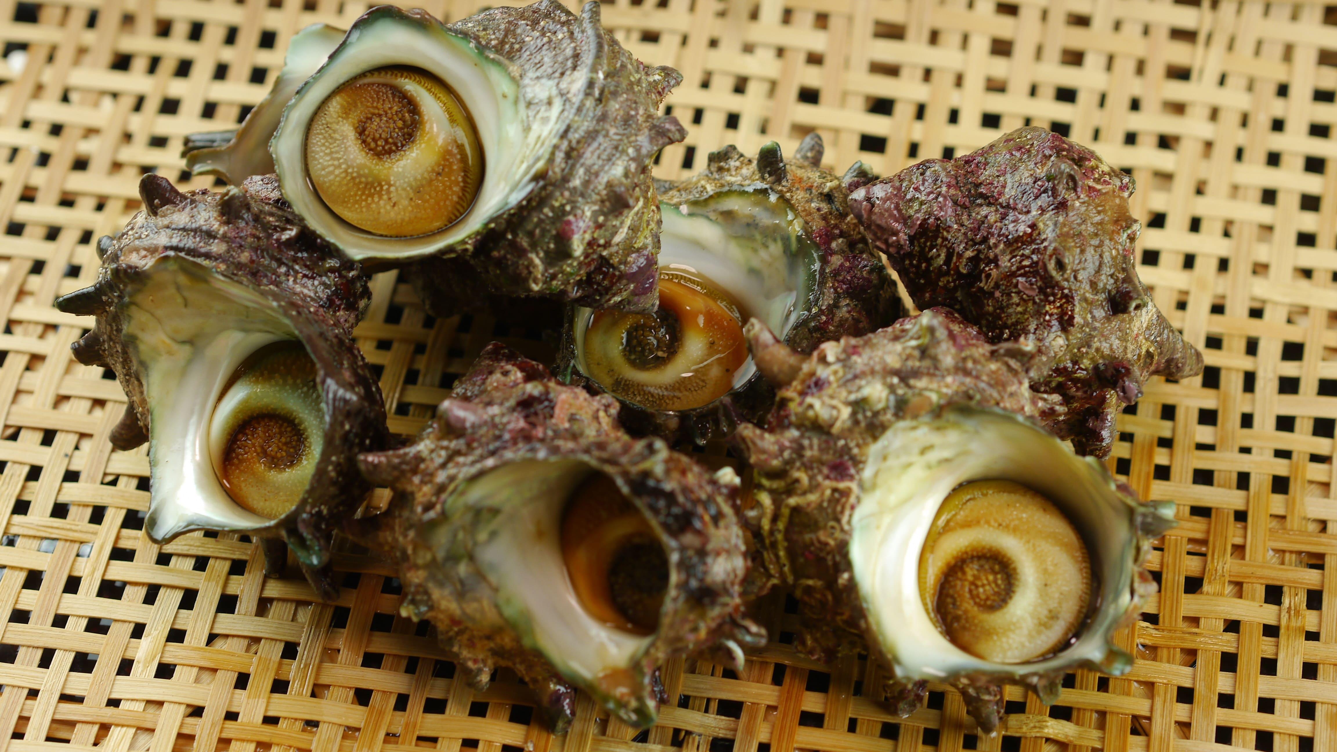 サザエがたっぷり! サザエご飯の素 3合炊用 3袋セット 京丹後産天然サザエ使用