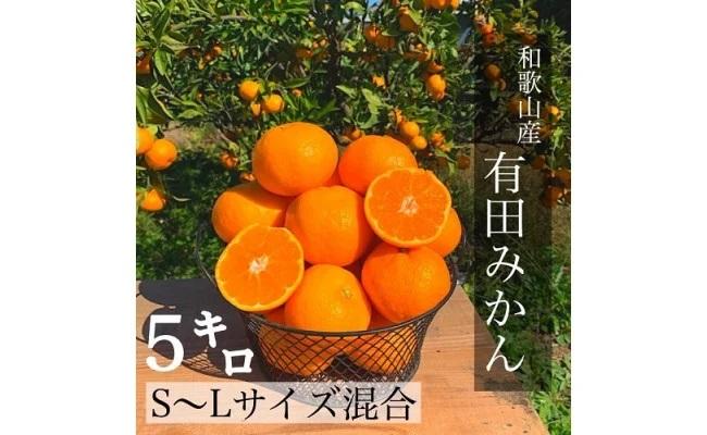 BL6002_【産地直送】和歌山県産有田みかん 5kg