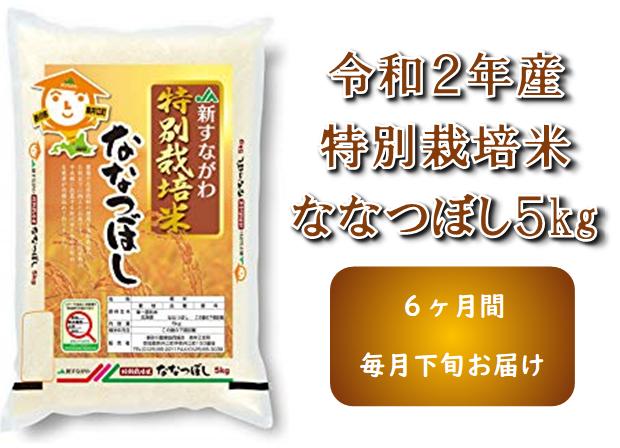 【新米】令和2年産 JA新すながわ産 特栽米ななつぼし定期便(5kg×6ヶ月)