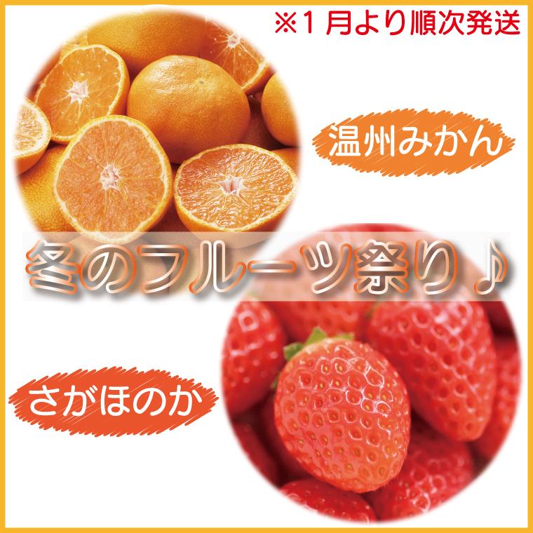BG170_冬のフルーツ祭り♪さがほのか★温州みかんお得セット(1月から順次発送)