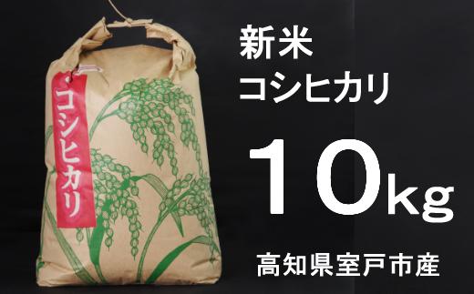 TA028【令和3年産】室戸産新米コシヒカリ10kg