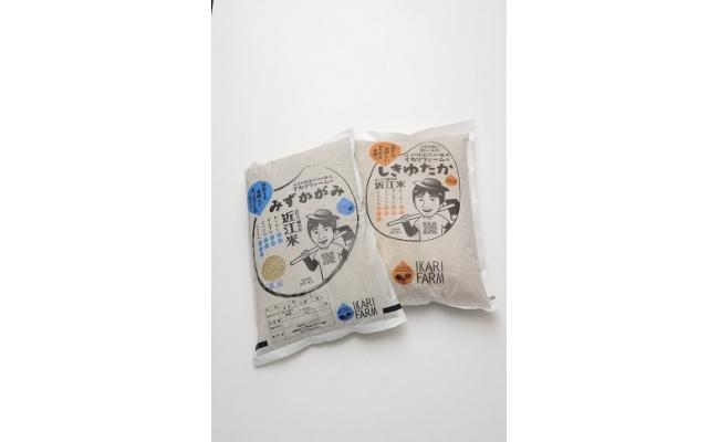 【2年産】「しきゆたか」「みずかがみ」詰め合わせセット 玄米【10㎏(5㎏×2品種)】【C023SM1】