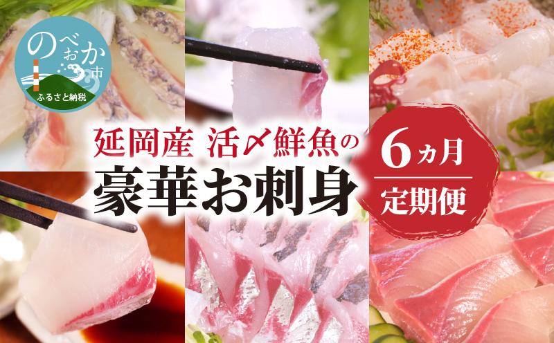 F006 【定期便】延岡産活〆鮮魚の豪華お刺身(6ヶ月)