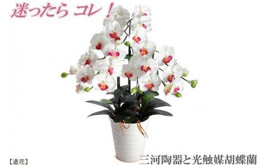 綺麗で丈夫な三河陶器で贈る 光触媒胡蝶蘭(白色の陶器×白桃色の花) H100-008