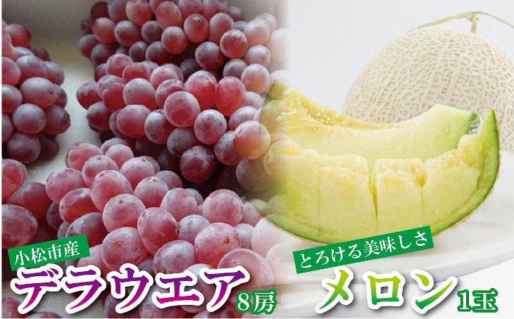 030068. 【みずみずしいフルーツ盛り】デラウェア8房&メロン1玉セット