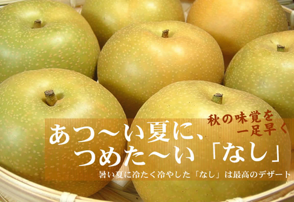 V6254_和歌山県産 幸水梨 約4kg (果実サイズおまかせ)
