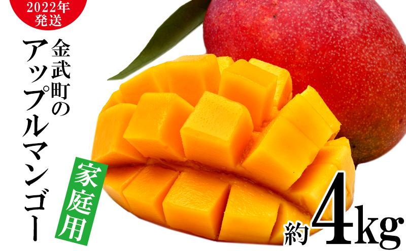 【2022年発送】農家さん直送!アップルマンゴー約4kg 家庭用