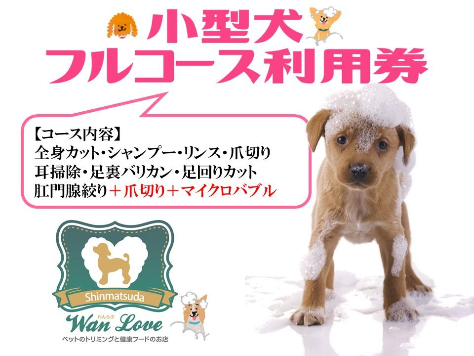 【小型犬】フルコース利用券(1回)