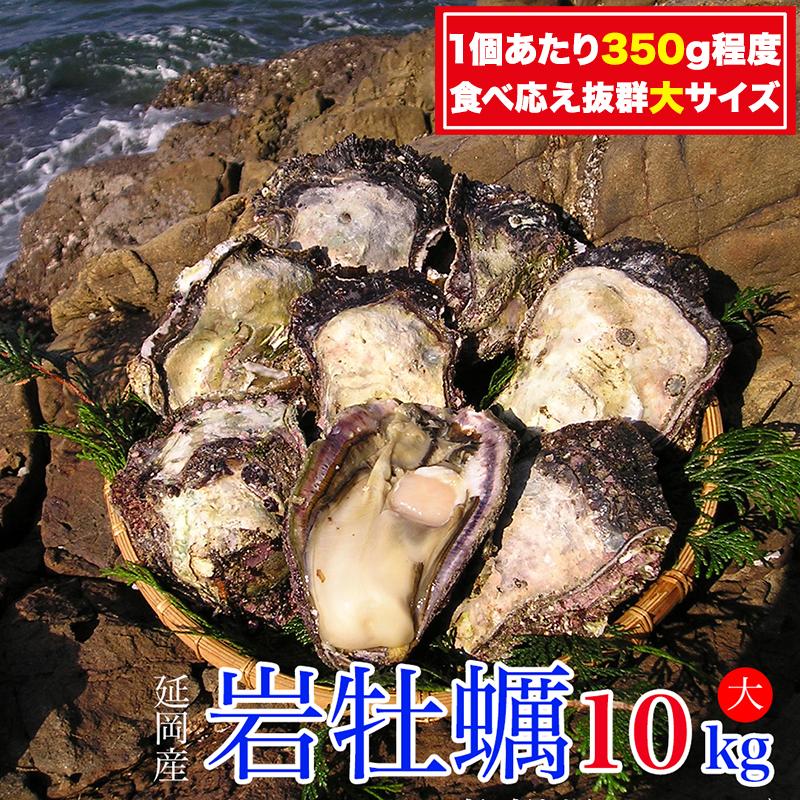 D027 延岡産天然岩牡蠣(生食用)10kg(大)(2021年4月から発送開始)