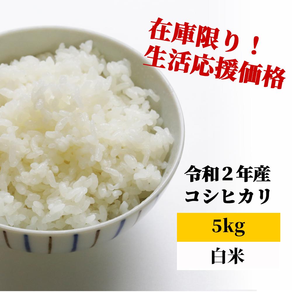 <令和2年産>K26 あわくら源流米 コシヒカリ 白米5kg