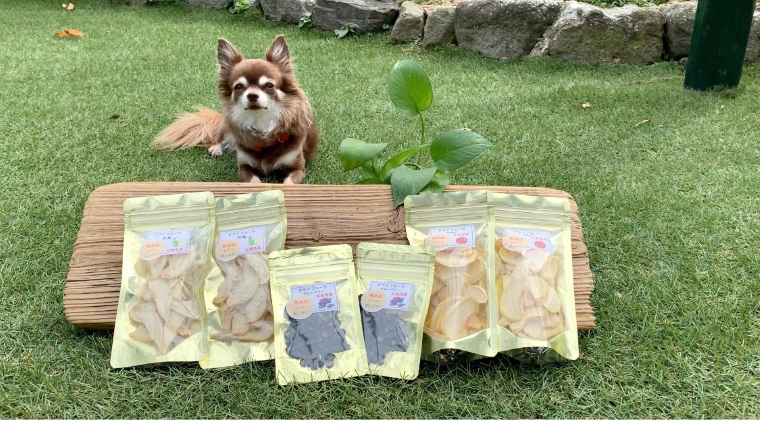 DT010_犬の無添加おやつ☆お砂糖不使用ドライフルーツ☆秋の果物3種セット