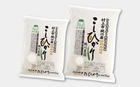 A4132 【令和3年産米】村上市桃川産  特別栽培コシヒカリ7kg
