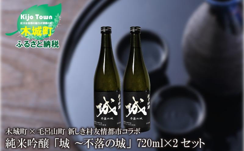 K21_0002<木城町・毛呂山町 新しき村友情都市コラボ 日本酒 純米吟醸「城 ~不落の城」2本>