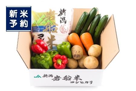 【新米受付】NA4031 岩船米コシヒカリと季節の野菜セット①