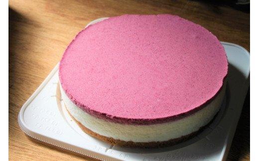09-03 ブルーベリーヨーグルトムースケーキ
