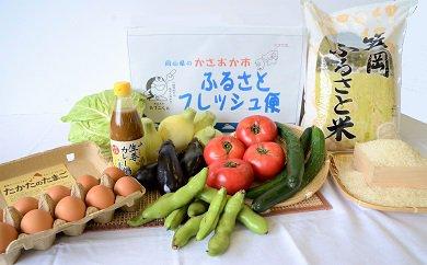 E-03 ふるさとフレッシュ便(旬野菜・ふるさと米)12回コース