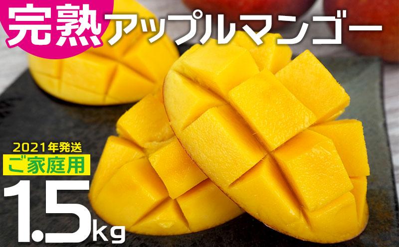 農園直送!ご家庭用でも極上に美味しい完熟アップルマンゴー1.5kg 【2021年発送】